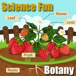 Science Homework Botany