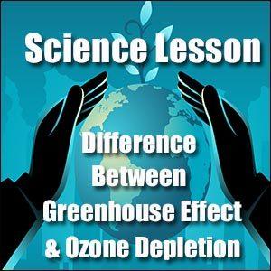 Ozone Depletion & Greenhouse Effect